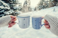 Couple hands in mittens take a mugs with hot tea in winter fores. T Stock Photos