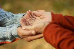 Couple of hands together Royalty Free Stock Photos