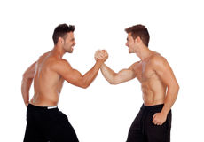 Couple of handsome muscled men competing. Isolated on a white background Stock Images