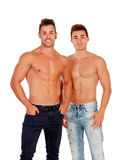 Couple of handsome muscled men Royalty Free Stock Image