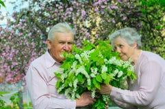 couple happiness Στοκ φωτογραφίες με δικαίωμα ελεύθερης χρήσης