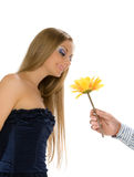 Couple of happy young adults Royalty Free Stock Photo