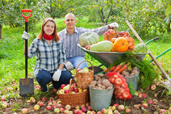 Couple with  harvested vegetables in garden Royalty Free Stock Images