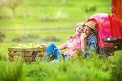 Couple harvesting apples Stock Image