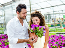 Couple have fun choosing flower pots in a greenhouse. Beautiful couple have fun choosing flower pots in a greenhouse Stock Photos