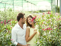 Couple have fun choosing flower pots in a greenhouse. Couple have fun choosing flower pots in spring Stock Photo