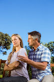 Couple having an argument on park bench Royalty Free Stock Photography