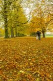 Couple having an automn romatic walk Royalty Free Stock Image