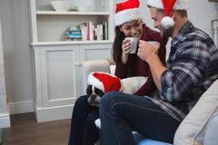 Couple having coffee with their pet dog in living room. At home royalty free stock photos