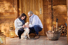Couple having fun with dog Royalty Free Stock Photography