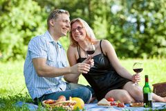 Couple having picnic stock images
