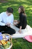 Couple Having Picnic Royalty Free Stock Photo