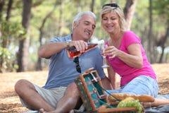 Couple having a picnic Stock Photography