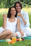Couple having a picnic Royalty Free Stock Photography