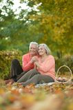 Couple having picnic  in autumn park Royalty Free Stock Images