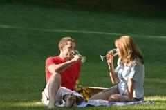 Couple Having Picnic - horizontal Stock Images