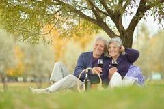 Couple having picnic Royalty Free Stock Photos
