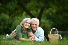 Couple having picnic Stock Photos
