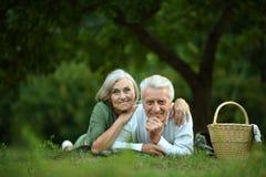 Couple having picnic Stock Image