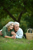 Couple having picnic Royalty Free Stock Photography
