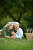 Couple having picnic Royalty Free Stock Photography