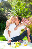 Couple having picnic in a park royalty free stock image