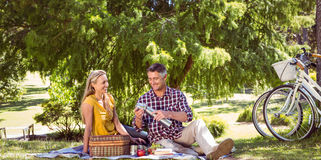 Couple having a picnic in the park Stock Photo