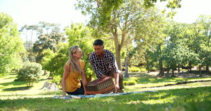 Couple having a picnic in the park stock footage