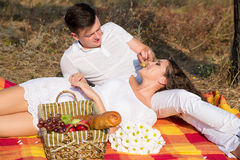 Couple having a picnic in park Royalty Free Stock Photos