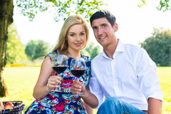 Couple having picnic wit red wine on meadow Stock Image