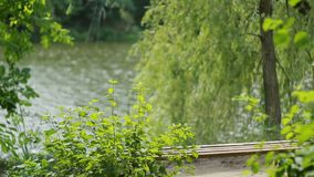 Couple Having A Rest In Park. Romantic young couple in love having a rest together in nature stock video footage