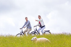 Couple having sea coast bicycle tour at levee. Couple having tour with bike at levee with sheep stock image