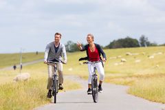 Couple having sea coast bicycle tour at levee. Couple having bicycle tour with bike at levee with sheep royalty free stock photo