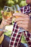 Couple having wine in the park Stock Photos