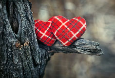 A couple of hearts Royalty Free Stock Photography