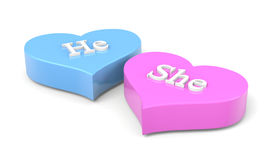 Couple of Hearts He She English Text. Couple of Blue and Pink Hearts with He She English Text on White Background Love Concept 3D Illustration Royalty Free Stock Photo