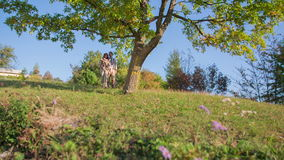 Couple on a hike on beautiful day. Slow motion footage of a couple taking a hike on the Sunday in the middle of the nice scenery on the sunny day stock video