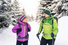 Couple hikers trekking in winter woods stock images