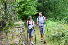 Couple of hikers walking in forest. Track Stock Photo