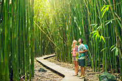 Couple hiking through bamboo forest Stock Photography