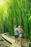 Couple hiking through bamboo forest Stock Photo