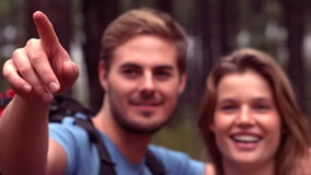Couple hiking through a forest stock footage