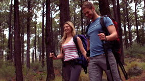 Couple hiking through a forest stock video