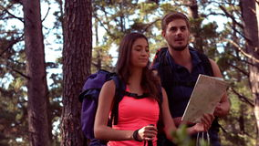 Couple hiking through a forest stock video footage