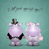 A couple of hippos spouses Stock Photo