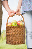 Couple holding basket of apples Stock Photos