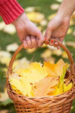 Couple holding a basket Royalty Free Stock Photos
