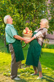 Couple holding basket of fruits. Royalty Free Stock Images