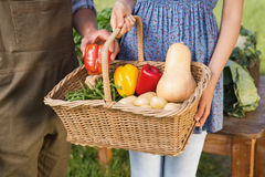 Couple holding basket of vegetables Stock Photos