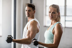 Couple holding dumbbells looking at camera Stock Image